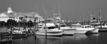 Picture of boats in Murrells Inlet, SC